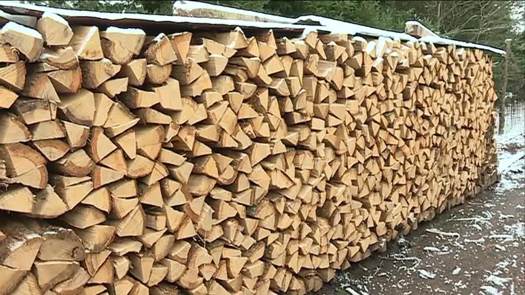 Le bois de chauffage, une solution d'avenir ?